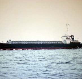 "499-type cargo ship ""Seishomaru"" was launched."