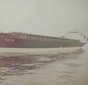 499型船舶伯洋丸