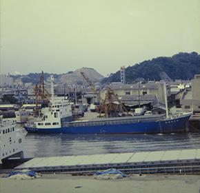 臨海倉庫建設に着手。海上輸送に進出。